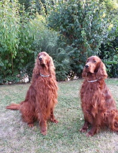 Cedric und Quentin