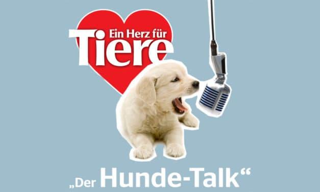 Hunde-Talk – Podcast von ein Herz für Tiere